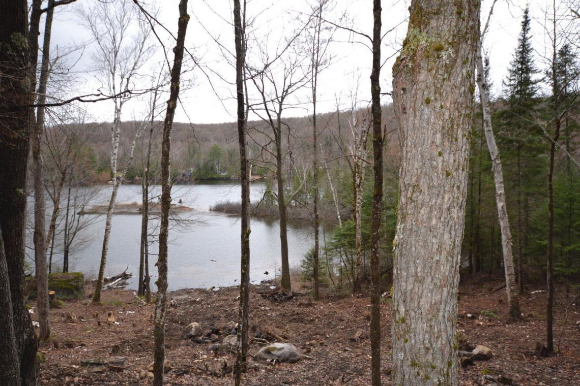 1.6 Acres, Select Trail, Drag Lake's Outlet Bay, Haliburton