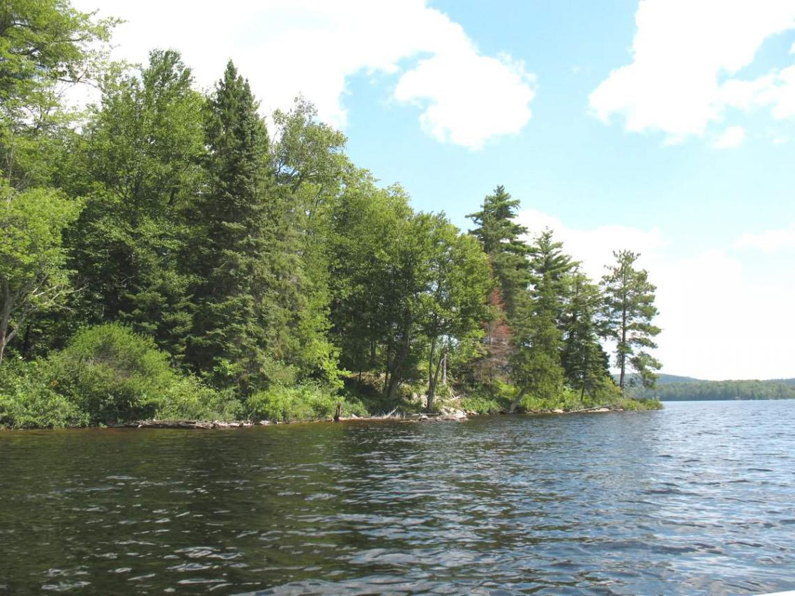 Multiple Lots on Haliburton and Percy Lakes