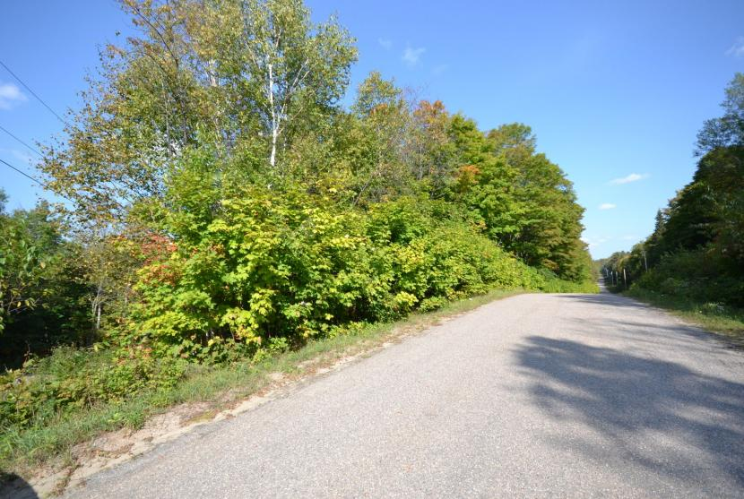 1.3 Acres, Angel Road, Haliburton thumbnail
