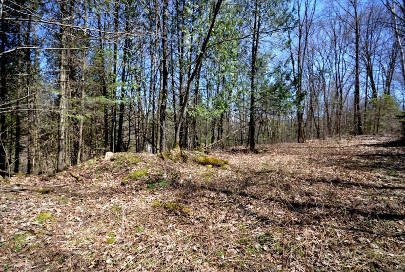 2 Lots, 2.28 Acres, Blairhampton Road, Haliburton thumbnail