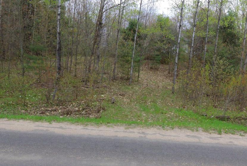 5 Acres, Deep Bay Road, Minden (Lot 3) thumbnail