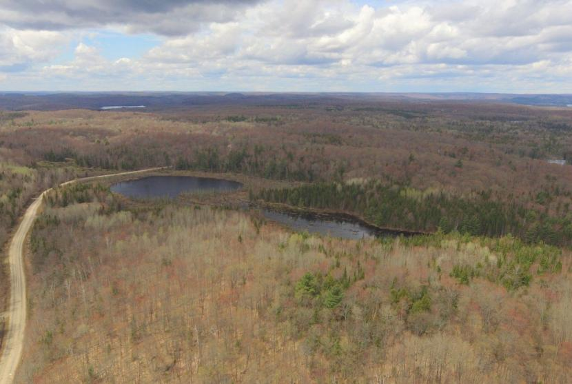 85 Acres, Harburn Road, Haliburton thumbnail