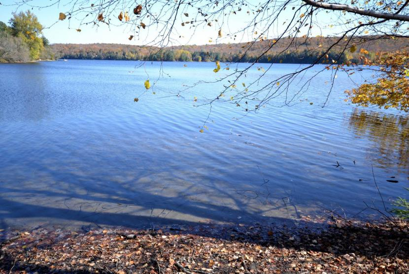 Deer Point Lot 1, Kashagawigamog Lake, Haliburton thumbnail
