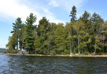 Haliburton Lake, East Shore Lots